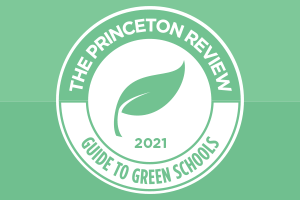 Princeton Review Guide Logo